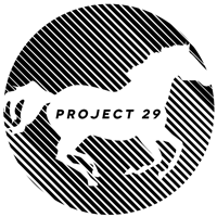 Project 29